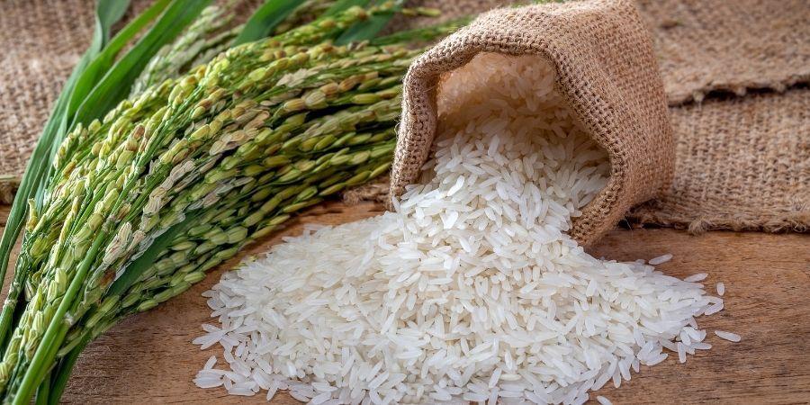 acompañar barbacoa de cordero con arroz