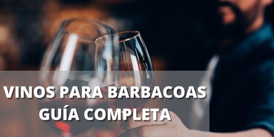 VINOS PARA BARBACOAS GUÍA COMPLETA