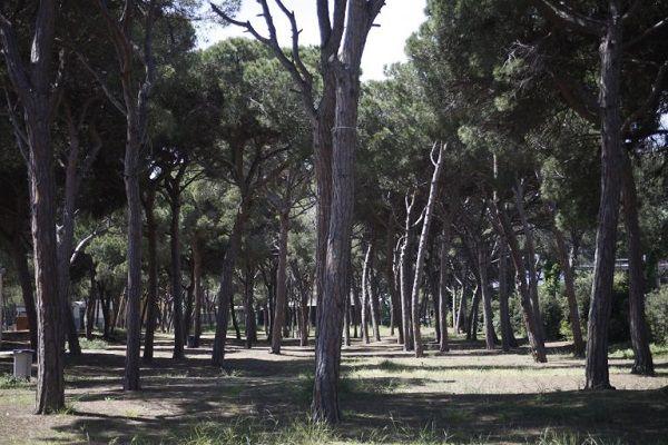 barbacoa europa en barcelona